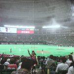 スポーツ観戦⚾️