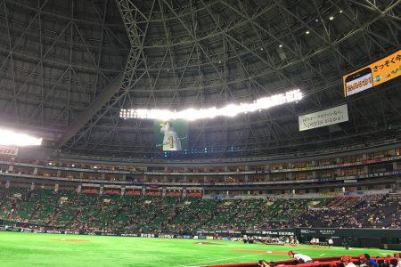 野球観戦⚾️