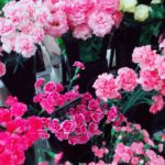 お花屋さん🌷